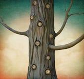 Magic Tree Royalty Free Stock Image