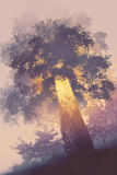 Magic tree with light glowing inside. Illustration painting Royalty Free Stock Images