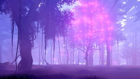 Magic tree in misty night forest 4K animation. Dreamlike woodland scene with ghost dead tree surrounded by magical firefly lights in a spooky misty night forest stock video