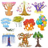 Magic tree vector fantasy forest with cartoon treetops and magical plants or fairy flowers illustration forestry set of. Colorful mystery oak isolated on white stock illustration