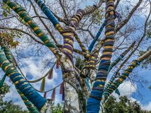 Magic tree whose branches are surrounded by colorful fabrics in Nan Riverside Art Gallery park. Close up and details of colorful tree with colored ribbons stock images