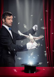 Magic trick with pigeon. Magician performing magic trick with pigeon on theatrical stage royalty free stock photography
