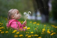 Magic Unseen Dandelion Blow Stock Images