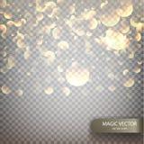 Magic vector luminous background. Shine particles isolated on transparent background. Bokeh isolated on transparent background. Vector illustration EPS10 Stock Image
