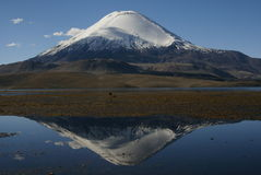 Magic view of volcan parinacota, chile Royalty Free Stock Photos