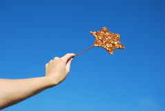 Magic wand star Royalty Free Stock Image