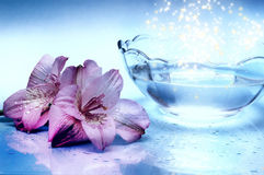 Magic water. A bowl with water with mystic stars with pink lily flowers standing on reflexing surface like a comcept for mystical holly water element Royalty Free Stock Photos