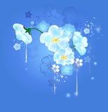 Magic white flowers Royalty Free Stock Photo