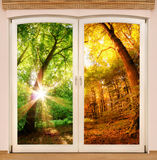 Magic window showing season change Stock Photography
