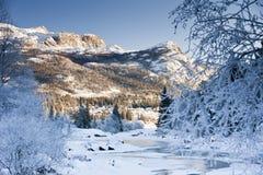 Magic Winter Royalty Free Stock Photo