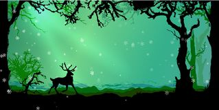 Magic Winter forest vector background Royalty Free Stock Photography