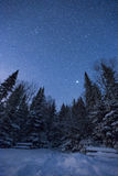 Magic Winter Night Royalty Free Stock Image