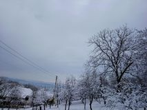Magic of winter stock image