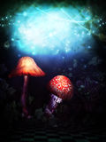 Magic Wonderland. A magical wonderland with mushrooms and magic strings Stock Images