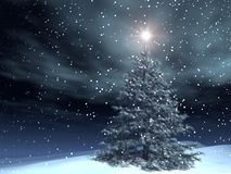 Magic Xmas. Xmas tree in a northern landscape with a shining star on the top Stock Image