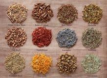 Free Magical And Medicinal Herbs Stock Photos - 29251143