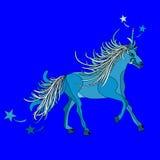 Magical animal unicorn Stock Photos