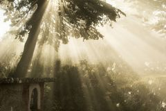 The magical atmosphere of the rays of light stock photography