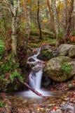 Magical autumn landscape theme. Stock Photography