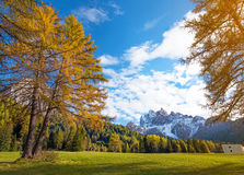 Magical autumn landscape with yellow larch on a background of mo. Untains in the Dolomites. The Italian Alps. Meditation, anti-stress, relaxation - concept Royalty Free Stock Image