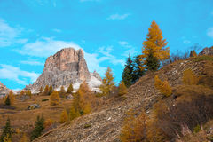 Magical autumn landscape with yellow larch on a background of mo. Untains in the Dolomites. The Italian Alps. Meditation, rest, calm, anti-stress, relaxation Royalty Free Stock Images