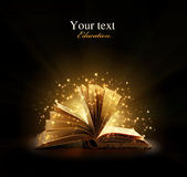 Magical bok arkivfoton