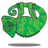 Magical Chameleon. Vector cartoon illustration of a magical chameleon hanging from his own tail, levitating in the air stock illustration