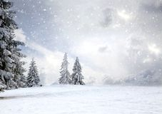 Magical Christmas Card With Fairy Tale Winter Landscape With Snow Covered Firs Stock Images