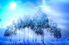 Magical Christmas forest Royalty Free Stock Photo