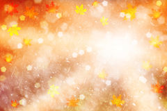 Magical colorful autumn season leaves illustration background Royalty Free Stock Photos
