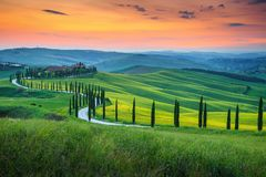 Famous Tuscany landscape with curved road and cypress, Italy, Europe. Magical colorful sunset in Tuscany. Picturesque agrotourism and typical curved road with stock photos
