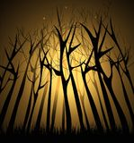 Magical Dark forest. With lights in the branches of trees royalty free illustration