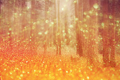Magical dreamy bokeh background Royalty Free Stock Photography