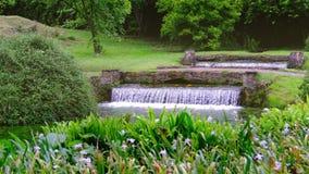 Magical eden garden fountain 4k stock video