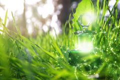Magical fairy dust potion in bottle in the forest. Magical fairy dust potion in bottle in the forest stock photos