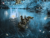 Magical forest. Ducks in a magical and dark forest with fabulous creatures Royalty Free Stock Photos