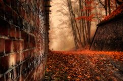 Magic forest road, brick wall, autumn colors, trees. A magical forest, a road along a brick wall, beautiful autumn colors. Fog, atmosphere of anxiety Stock Image