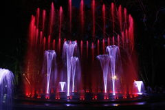 Magical fountain in Margaret Island Budapest by night Royalty Free Stock Photos