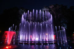 Magical fountain in Margaret Island Budapest by night Stock Photography