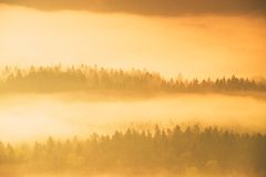 Magical gentle orange daybreak. Misty daybreak in a beautiful hills. Peaks of hills are sticking out from fog Stock Photos