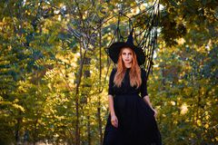Beautiful ginger witch woman in a hat on a forest background. Halloween costumes concept. Copy space. A magical ginger witch in a hat on a blurred forest stock images