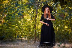 Beautiful ginger witch woman in a hat on a forest background. Halloween costumes concept. Copy space. A magical ginger witch in a hat on a blurred forest royalty free stock photography