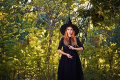 Beautiful ginger witch woman in a hat on a forest background. Halloween costumes concept. Copy space. A magical ginger witch in a hat on a blurred forest stock photography