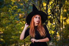 Beautiful ginger witch woman in a hat on a forest background. Halloween costumes concept. Copy space. A magical ginger witch in a hat on a blurred forest stock photos