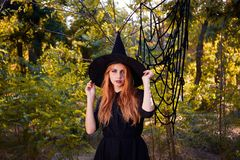 Beautiful ginger witch woman in a hat on a forest background. Halloween costumes concept. Copy space. A magical ginger witch in a hat on a blurred forest royalty free stock photo