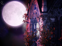 Magical gothic night. Beautiful illustration of the magical moon Stock Photography