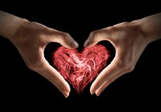 Magical heart in hands Stock Photos