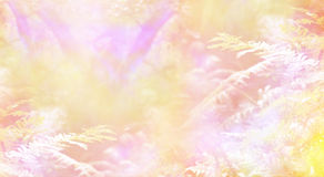 Magical Heavenly Woodland. Dreamy golden peach and pink ethereal woodland background with soft focus trees in the background and ferns in the foreground royalty free stock photo