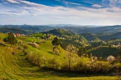 Magical Landscape Stock Images