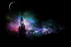 Magical Landscape. Magical colorful landscape with moon Royalty Free Stock Photography
